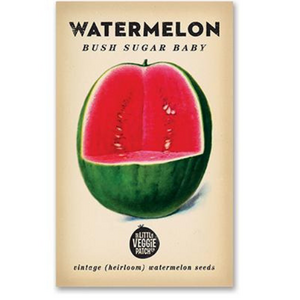 The Little Veggie Patch Co Watermelon 'Bush Sugar Baby' Heirloom Seeds