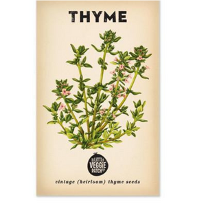 The Little Veggie Patch Co Thyme 'Summer' Heirloom Seeds