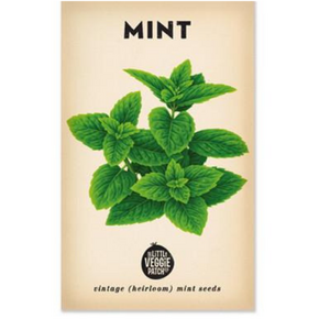 The Little Veggie Patch Co Mint 'Peppermint' Heirloom Seeds