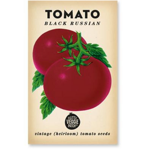 The Little Veggie Patch Co Tomato 'Black Russian' Heirloom Seeds
