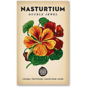 The Little Veggie Patch Co Naturturtium 'Double Jewel' Heirloom Seeds